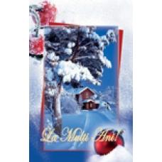 Felicitare de iarna KDLux1-(18)